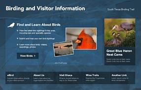 eBird Info Center Screenshot